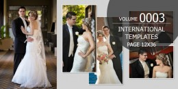 International Template Volume 12x36 - 0003