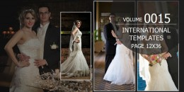 International Template Volume 12x36 - 0015