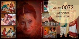 Wedding Page Volume 12x36 - 0072