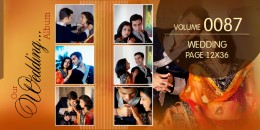 Wedding Page Volume 12x36 - 0087