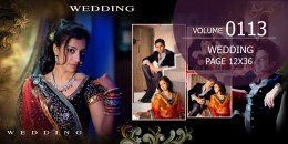 Wedding Page Volume 12x36 - 0113