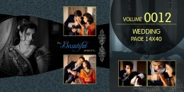 Wedding Page Volume 14X40 - 0012