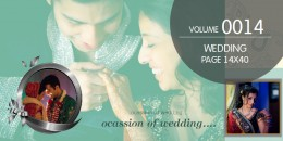 Wedding Page Volume 14X40 - 0014