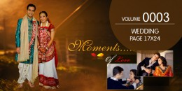 Wedding Page Volume 17X24 - 0003
