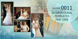 International Template Volume 12x36 - 0011