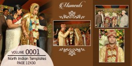 North Indian Wedding  Templates  12X30_0001