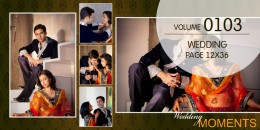 Wedding Page Volume 12x36 - 0103